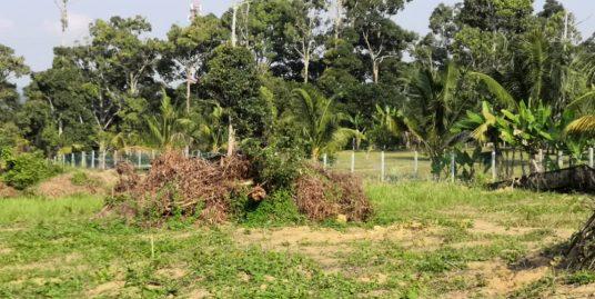 1 Acre [Agriculture land] Tanah Pertanian Jalan Mantin Lenggeng Seremban